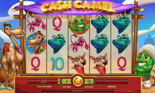 Casino net online iSoftBet 51024