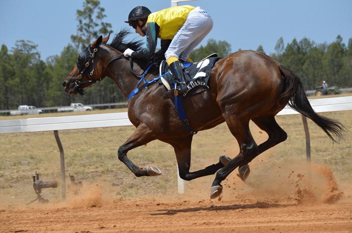 Como analizar carreras de caballos ranking casino México 784985