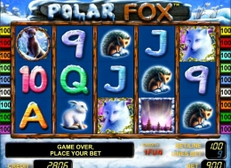 Casino grand royal 24 tragamonedas en linea 760048