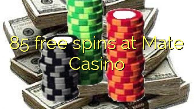 Casino Gowild slots wms online 865218