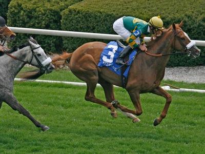 Como analizar carreras de caballos ranking casino México 459470