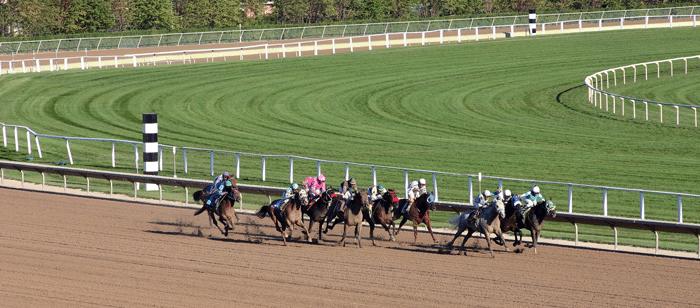 Como analizar carreras de caballos ranking casino México 541388